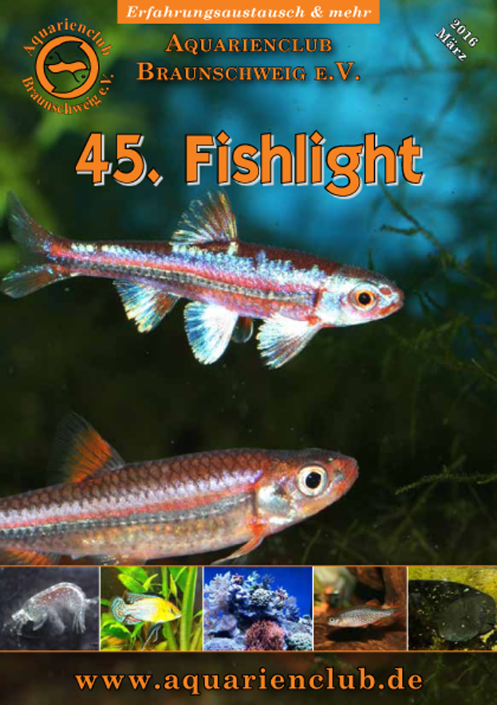 Fishlight 45