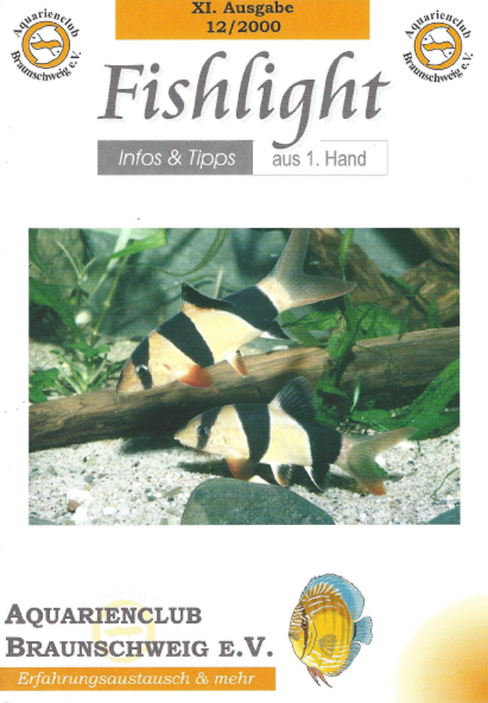 Fishlight 11