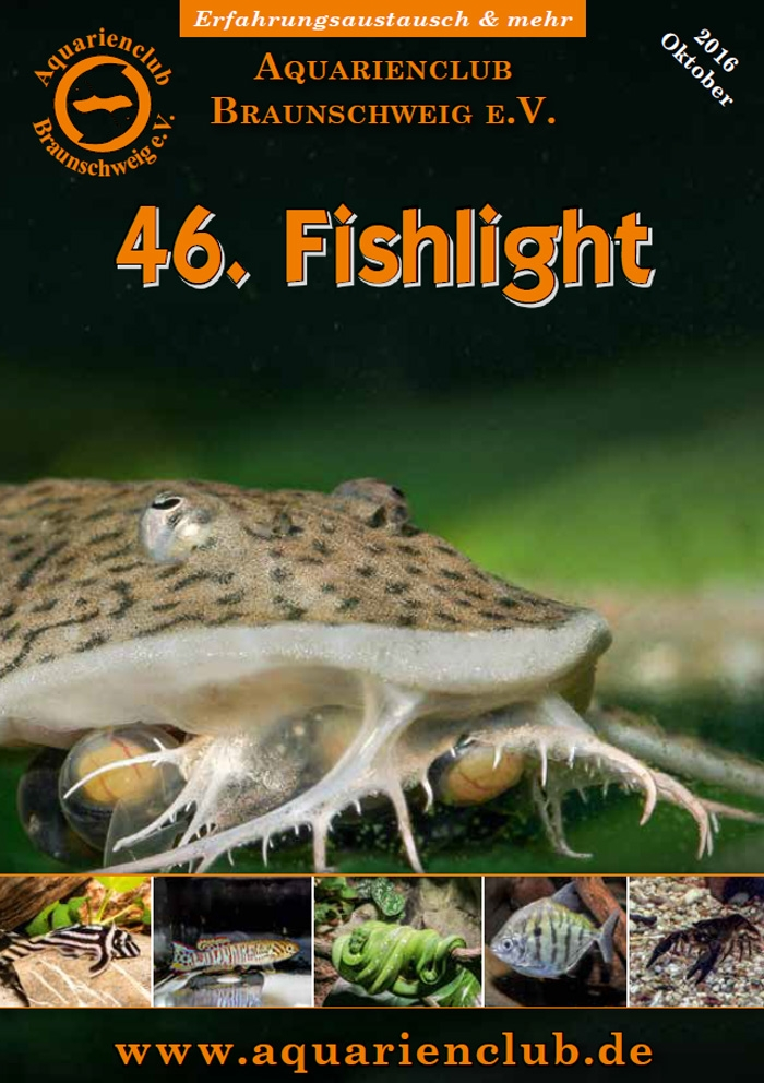Fishlight 46